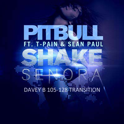 Shake Senora (Remix) (Davey B 105-128 Transition)